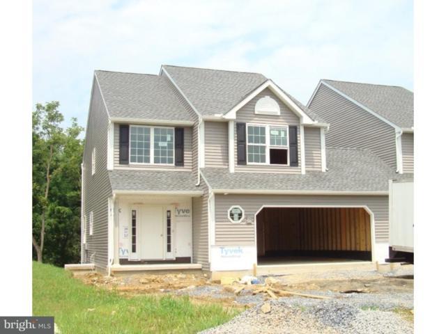 64 Regina Drive Lot 79, SINKING SPRING, PA 19608 (#1002114982) :: Colgan Real Estate