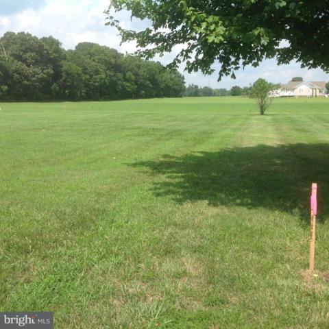 Lot 21 Seagull Road, SELBYVILLE, DE 19975 (#1002115028) :: Barrows and Associates