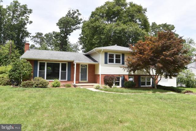 22907 Chestnut Road, LEXINGTON PARK, MD 20653 (#1002124508) :: McKee Kubasko Group