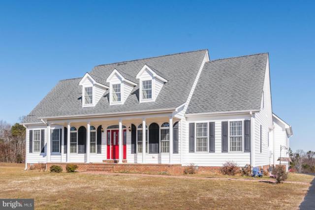 30286 Portobago Trail, PORT ROYAL, VA 22535 (#1002127952) :: Colgan Real Estate