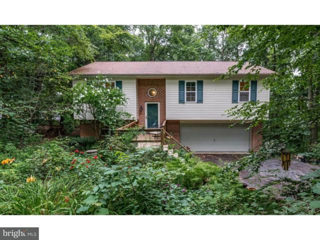 1975 Chuck Wagon Drive, AUBURN, PA 17922 (#1002131266) :: The Craig Hartranft Team, Berkshire Hathaway Homesale Realty