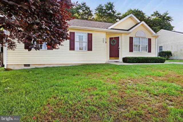 10603 Bushwillow Way, HAGERSTOWN, MD 21740 (#1002131348) :: Colgan Real Estate