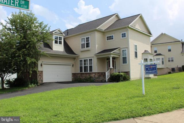 12209 Columbia Springs Way, BRISTOW, VA 20136 (#1002136354) :: The Putnam Group