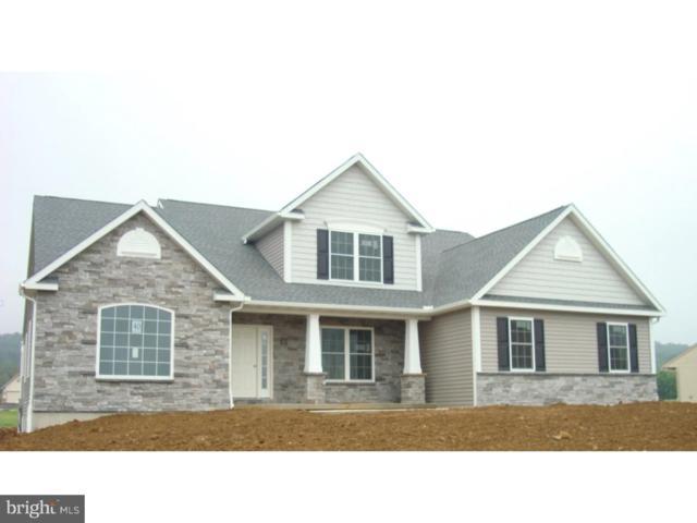20 Middletown Road, FLEETWOOD, PA 19522 (#1002141784) :: Colgan Real Estate