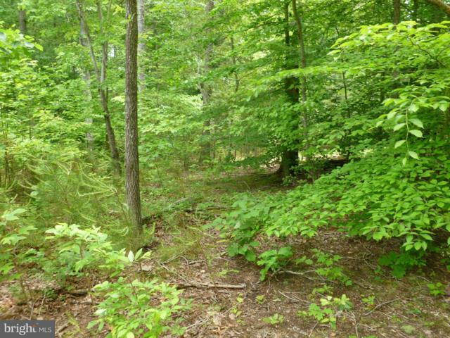 Rogers Ford Road Lot #2, SUMERDUCK, VA 22742 (#1002142664) :: RE/MAX Cornerstone Realty