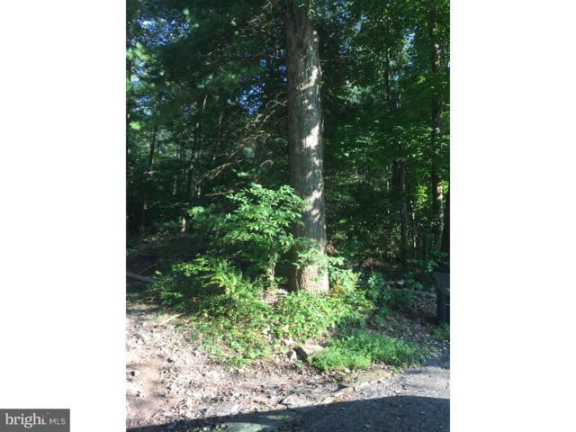 0 Mountain Road, GORDON, PA 17936 (#1002146660) :: Teampete Realty Services, Inc