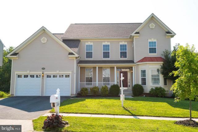 17604 Tedler Circle, ROUND HILL, VA 20141 (#1002147410) :: Colgan Real Estate