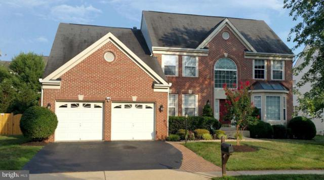 46729 Hollow Mountain Place, STERLING, VA 20164 (#1002147452) :: Circadian Realty Group
