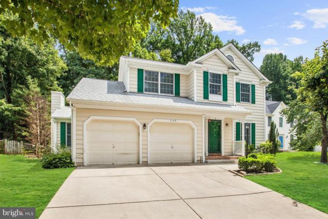 7145 Morning Light Trail, COLUMBIA, MD 21044 (#1002149188) :: Colgan Real Estate