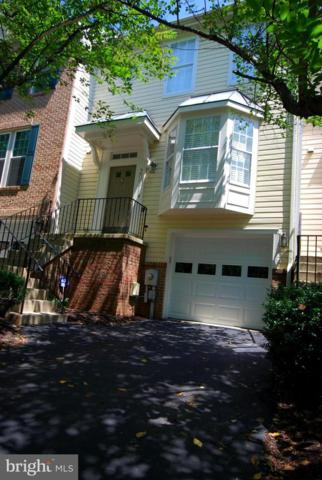 20311 Waters Row Terrace, GERMANTOWN, MD 20874 (#1002150068) :: The Putnam Group