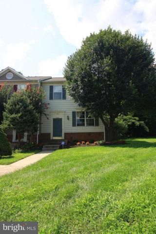 15046 Ardmore Loop, WOODBRIDGE, VA 22193 (#1002165402) :: The Withrow Group at Long & Foster