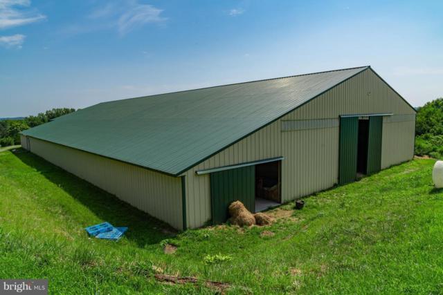 13431 Lewisdale Road, CLARKSBURG, MD 20871 (#1002165608) :: Colgan Real Estate