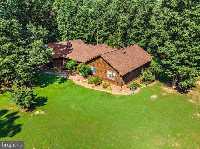 9280 Piedmont Lane, RHOADESVILLE, VA 22542 (#1002172098) :: Great Falls Great Homes