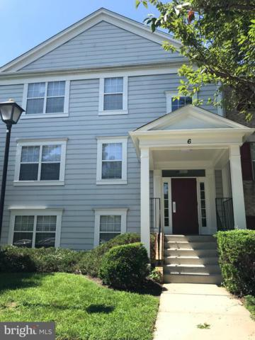 6 Normandy Square Court 2CC, SILVER SPRING, MD 20906 (#1002182608) :: Charis Realty Group