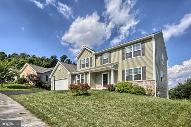 438 Chestnut Way, NEW CUMBERLAND, PA 17070 (#1002194064) :: Colgan Real Estate