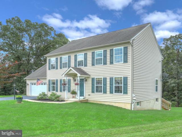 35 Crystal Court, YORK HAVEN, PA 17370 (#1002201290) :: The Jim Powers Team