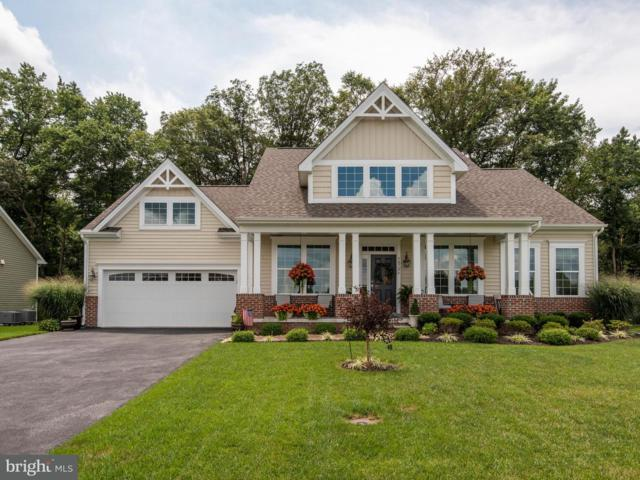 38726 Soft Beach Circle, SELBYVILLE, DE 19975 (#1002202646) :: The Windrow Group
