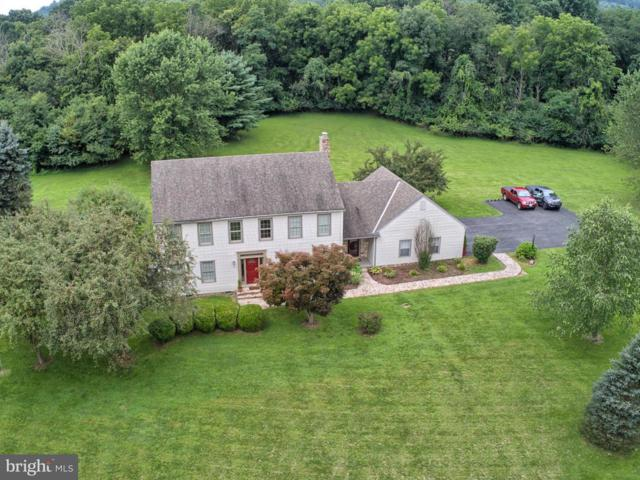 10185 Birchwood Lane, WAYNESBORO, PA 17268 (#1002203374) :: Benchmark Real Estate Team of KW Keystone Realty