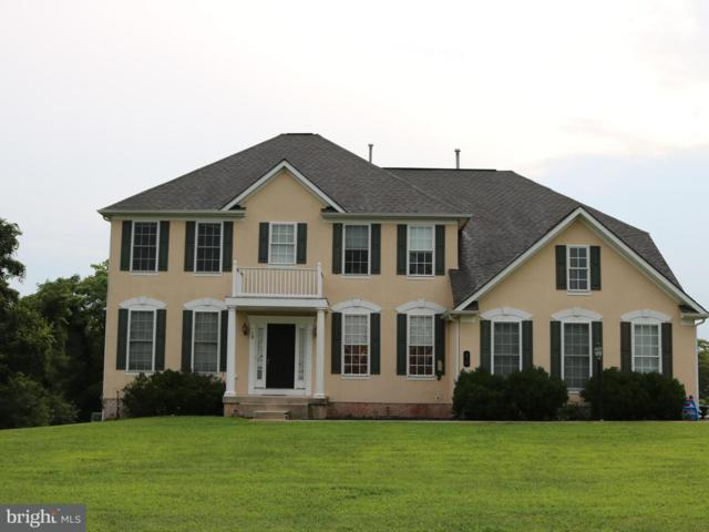 10 Paddock Court, ETTERS, PA 17319 (#1002205896) :: Benchmark Real Estate Team of KW Keystone Realty
