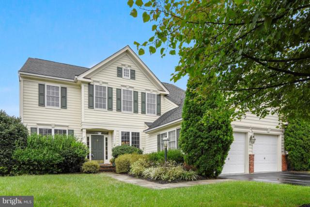 42062 Fiddlehead Place, ALDIE, VA 20105 (#1002217556) :: The Piano Home Group