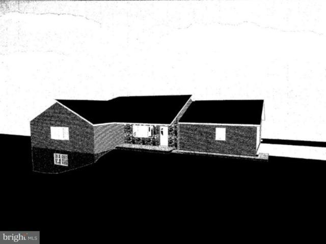 0 Carl Lane, SCHUYLKILL HAVEN, PA 17972 (#1002217718) :: The Craig Hartranft Team, Berkshire Hathaway Homesale Realty