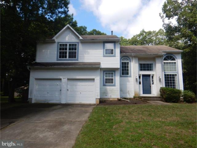 1905 Teaberry Avenue, WILLIAMSTOWN, NJ 08094 (#1002218296) :: Colgan Real Estate