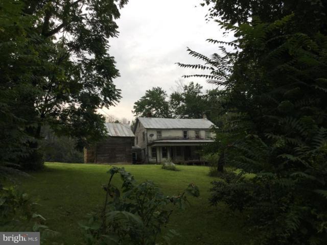 297 Pontzer Road, STRASBURG, VA 22657 (#1002218642) :: Wes Peters Group Of Keller Williams Realty Centre