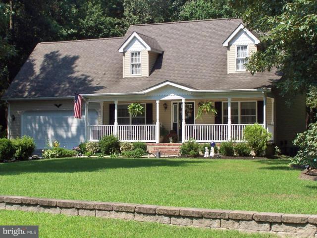 22264 Holly View Court, BRIDGEVILLE, DE 19933 (#1002226276) :: Colgan Real Estate