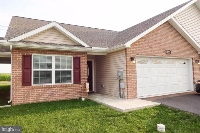 751 Shook Court W, GREENCASTLE, PA 17225 (#1002229308) :: Teampete Realty Services, Inc