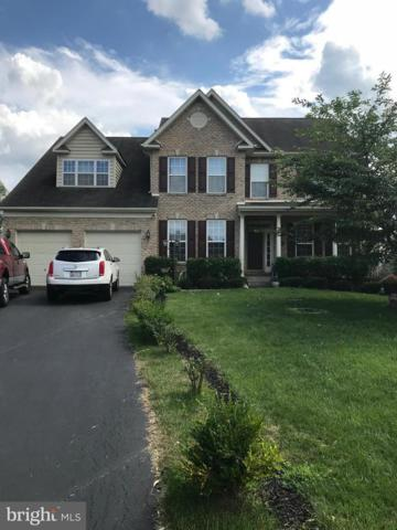 225 Cornell Drive, WOODSBORO, MD 21798 (#1002235684) :: Remax Preferred | Scott Kompa Group