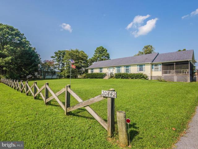 20442 Nanticoke Drive, NANTICOKE, MD 21840 (#1002235958) :: Condominium Realty, LTD