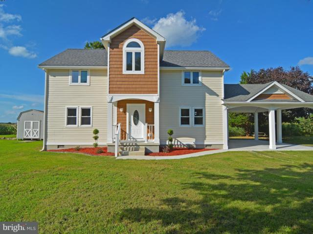 31769 Mccabe Court, SELBYVILLE, DE 19975 (#1002242522) :: RE/MAX Coast and Country