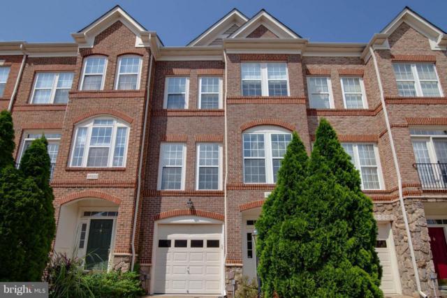 43224 Becontree Terrace, BROADLANDS, VA 20148 (#1002248742) :: Jim Bass Group of Real Estate Teams, LLC