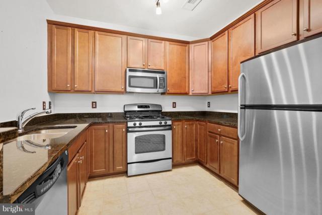 42285 San Juan Terrace Na, ALDIE, VA 20105 (#1002250942) :: Keller Williams Pat Hiban Real Estate Group