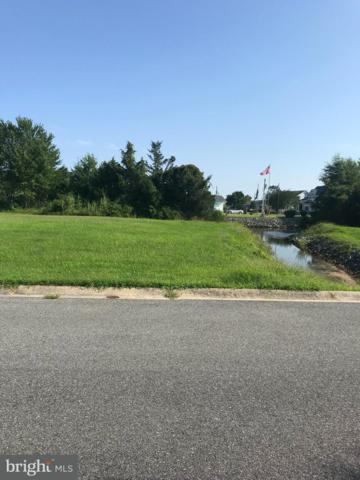 38027 Water Walk Way, SELBYVILLE, DE 19975 (#1002251352) :: Brandon Brittingham's Team