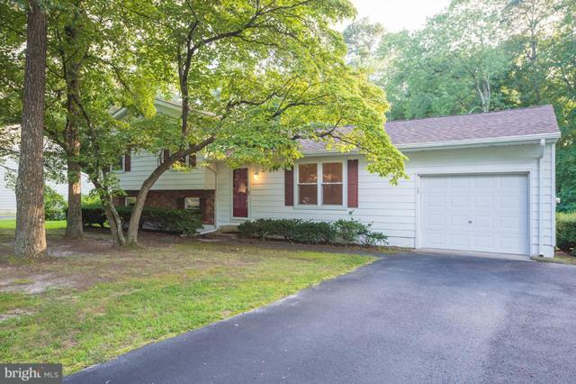6706 Oak Ridge Drive, HEBRON, MD 21830 (#1002251870) :: RE/MAX Coast and Country