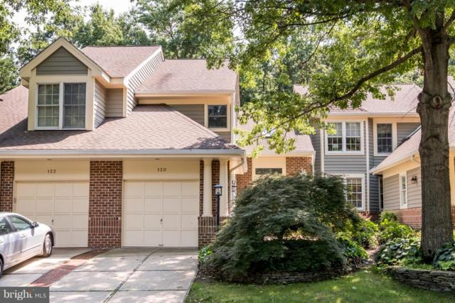 120 Spring Place Way, ANNAPOLIS, MD 21401 (#1002253494) :: AJ Team Realty