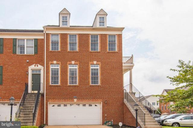 43717 Banshee Heights Terrace, ASHBURN, VA 20148 (#1002253578) :: Circadian Realty Group