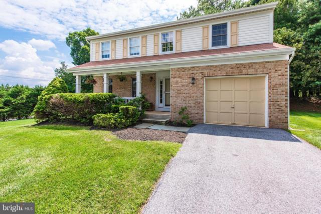 24 Birch Bark Court, OWINGS MILLS, MD 21117 (#1002253906) :: Colgan Real Estate