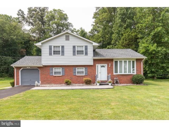 20 Yancey Lane, NEWARK, DE 19702 (#1002260196) :: Colgan Real Estate