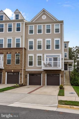 42183 Canary Grass Square 2A1, ALDIE, VA 20105 (#1002261366) :: The Putnam Group