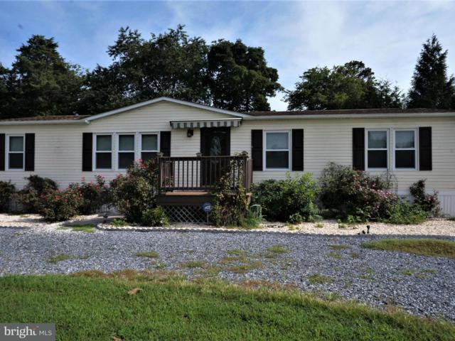 34544 Wesley Avenue, FRANKFORD, DE 19945 (#1002264542) :: The Windrow Group