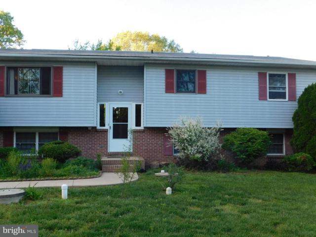 259 Black Oak Trail, DELTA, PA 17314 (#1002269588) :: Colgan Real Estate