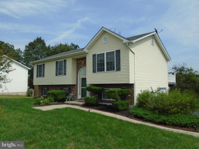 281 Coriander Way, BUNKER HILL, WV 25413 (#1002271678) :: Colgan Real Estate