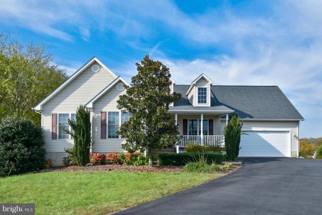 15706 Loblolly Lane, MINERAL, VA 23117 (#1002272306) :: Colgan Real Estate