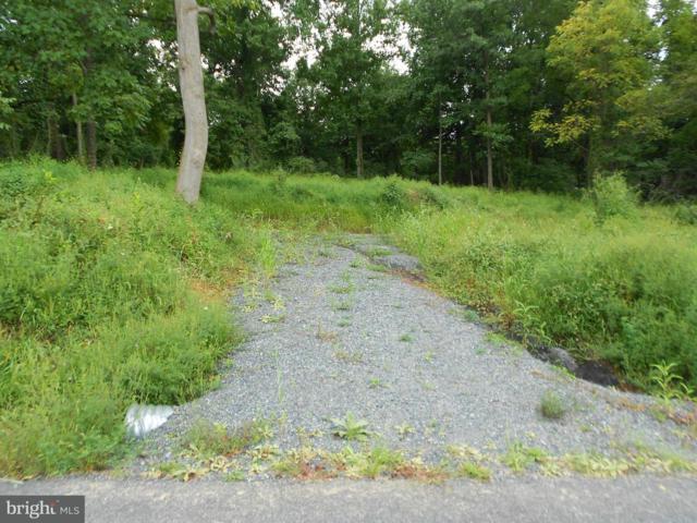 20 Partridge Trail, FAIRFIELD, PA 17320 (#1002272980) :: The Jim Powers Team