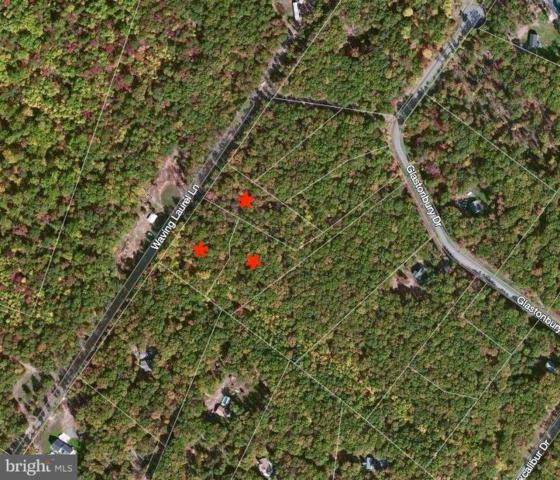 5 ACRES Glastonbury Drive, HEDGESVILLE, WV 25427 (#1002276092) :: Great Falls Great Homes