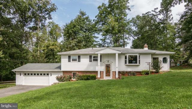 3826 Petersville Road, KNOXVILLE, MD 21758 (#1002276406) :: The Gus Anthony Team