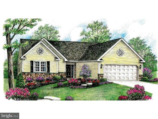 00 Stella Drive, SINKING SPRING, PA 19608 (#1002281140) :: Colgan Real Estate