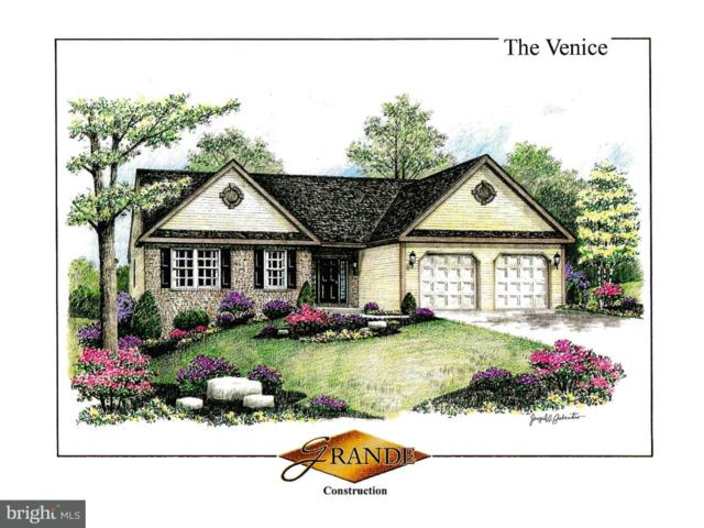 00 Stella Drive, SINKING SPRING, PA 19608 (#1002281278) :: Colgan Real Estate